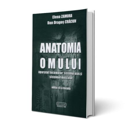 anatomia-omului