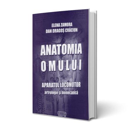 anatomie-aparatul-locomotor